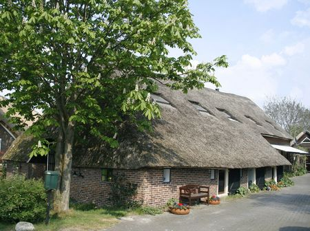 Old english style cottage with a thatched roof photo