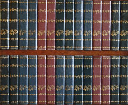 illiteracy: vac�a de color rojo y azul, tapas de libros