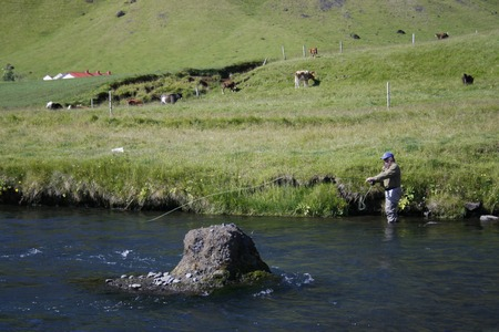 Flyfisher standing in river photo