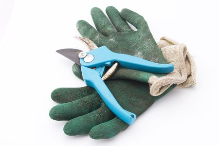 snipping: pruning shears with green gardening gloves Stock Photo