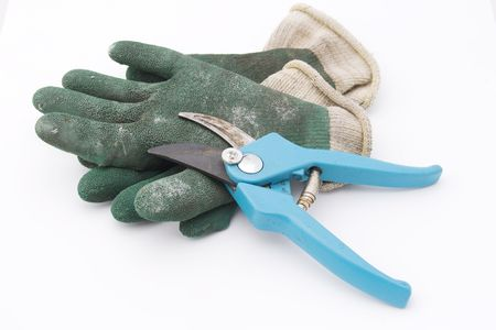 shears: pruning shears with gardening gloves Stock Photo
