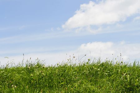 two and two thirds: Green grass and blue sky with white clouds. One third grass, two thirds sky