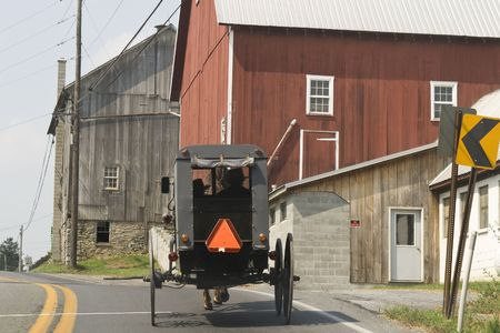 Amish buggy with two men with hats inside seen from behind photo
