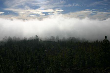 fog rising up the mountain close to vulcano Stock Photo - 3729402
