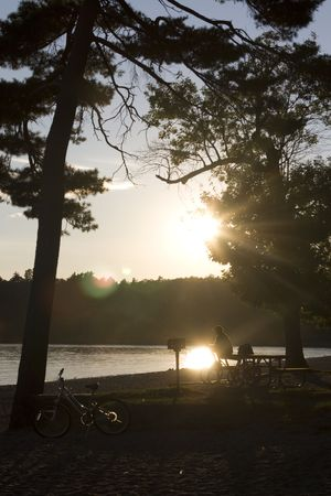 Man sitting on picnic table relaxing in sunset with bike against tree.  photo
