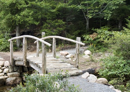 Rustic small wooden bridge made of logs in forest photo