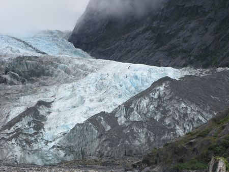 franz: Franz Joseph Glacier with people hinking  Stock Photo