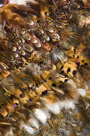 Close up of a Maori feather cloak also called a Kanu-huruhuru