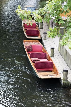 punting: Two pink punters on a river