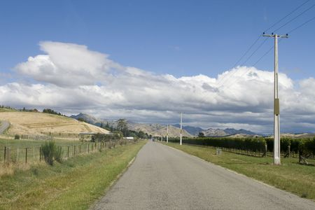 Empty route through Marlborough vineyards in New Zealand Stock Photo - 5000217
