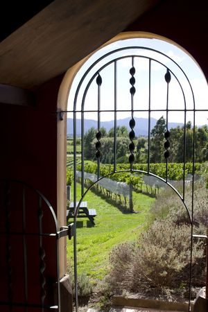 view through door: View at vineyrad through arched door