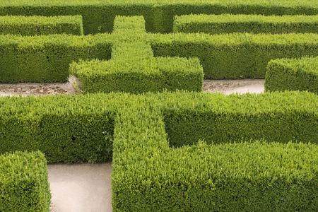 Part of a natural maze at a castle in Europe photo