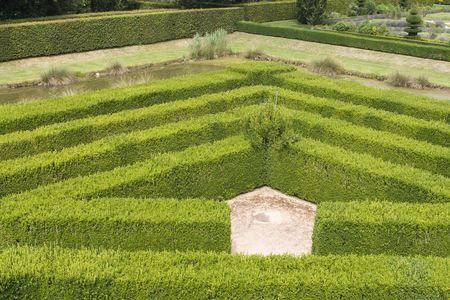 Corner part of a maze in a renaissance garden in France photo