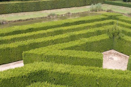 Part of big maze in renaissance garden in France photo