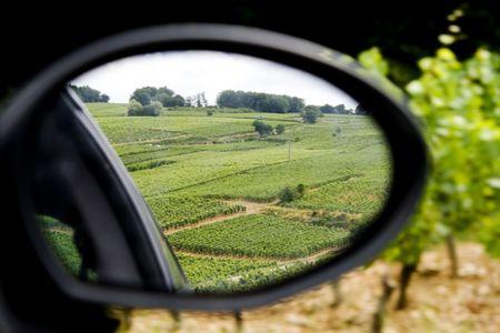 rear view mirror: Vi�edos en el paisaje franc�s a trav�s del espejo retrovisor del coche.