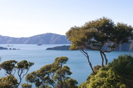 marlborough:   Part of the Queen Charlotte track at Marlborough Sounds in New Zealand  Part of the Queen Charlotte track at Marlborough Sounds in New Zealand Stock Photo