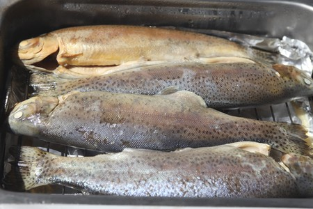 Four trouts in smoker oven Stock Photo - 7151274