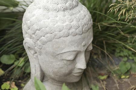 stone buddha: Stone buddha head in garden