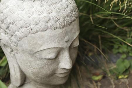 ハイアングルビュー: 仏頭の高角度のビュー