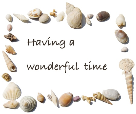 Text Having a wonderful time in a frame made of sea shells photo