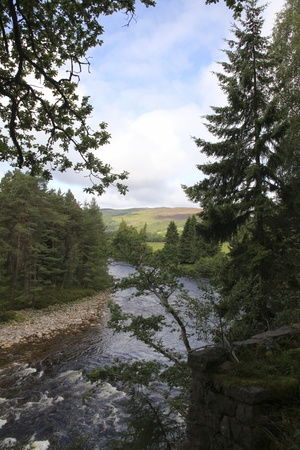 riverside tree: Beautiful view on river in Scotland Stock Photo