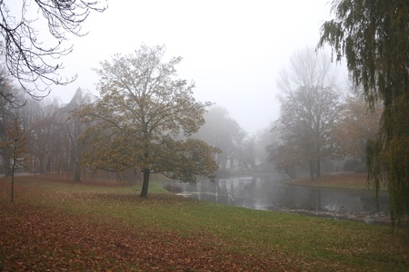 City park on a misty morning in fall colors