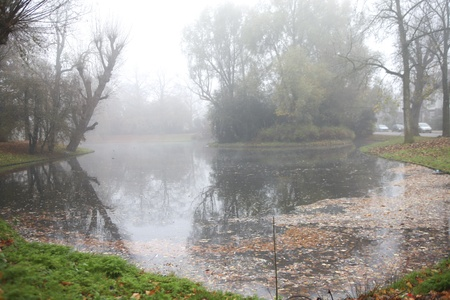 Misty pond in urban park in fall photo