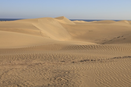 Maspalomas sand dunes at Gran Canaria photo