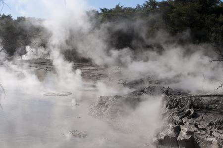 Volcanic mud boiling and steaming at Rotorua photo