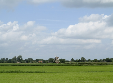 Beautiful windmill in the Netherlands in green landscape
