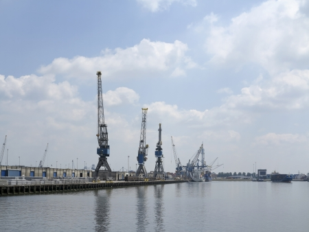 Harbor of Rotterdam with freight cranes photo