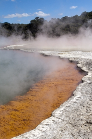 Champagne Pool in Wai-O-Tapu Geothermal Wonderland, Rotorua, New Zealand  photo