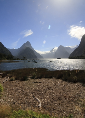 Milford Sound nature park in New Zealand photo