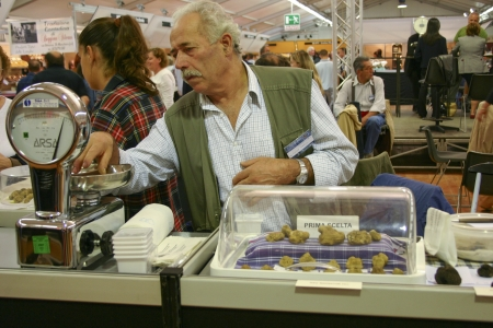 white truffle: ALBA-ITALY-OCT 1: Man weighing white truffles for sale at the Truffle Fair in Alba on Oct 01,2006. White truffles are a very rare delicacy and are sold for between 1000–2200 USD per pound