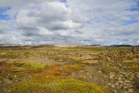 felsic: Landscape in Iceland in summer
