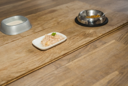 five star: Five star dinner for pet with meat , dry food and cat milk