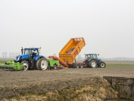 Potatoes are transferred to a tractor to get planted photo