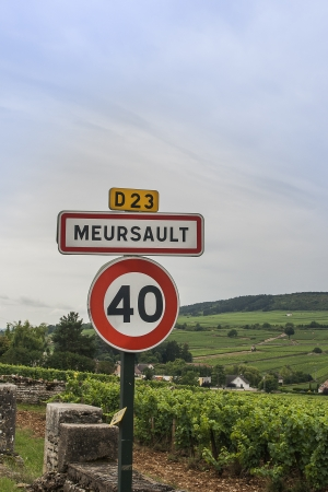 wine road: Meursault is one of the most famous white wines in Burgundy, France