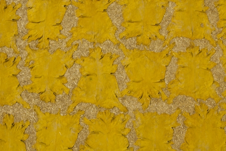 Saffron is used to color sheep hides yellow at the tannery  in Fez, Morocco. photo