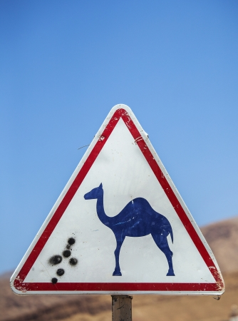 camel post: Camel road sign warning drivers to beware of camels crossing the road in Morocco
