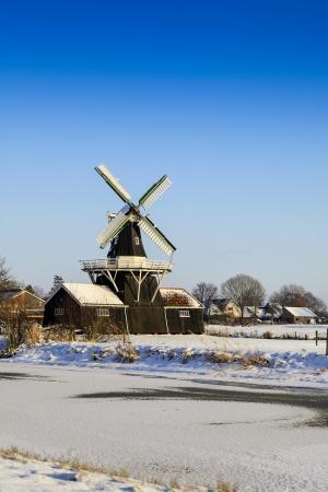 boer: Antiguo molino de madera y grano desde 1903 (renovado en 1985) en diez Boer, Holanda cerca de un r?o congelado