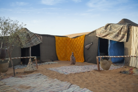 nomad: Berber tent camp in the Moroccan sahara at sunset