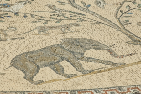 Elephant mosaic at the archaeological site  photo