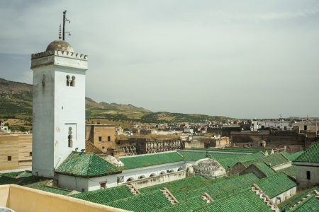Roof of the University of al-Karaouine in Fes, Morocco, which is the oldest continually operating university in the world.