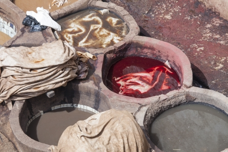 dyeing: Painting leather at the tannery the ancient way with natural products like saffran, poppy,ceder and indigo at  Fez, Morocco   Stock Photo