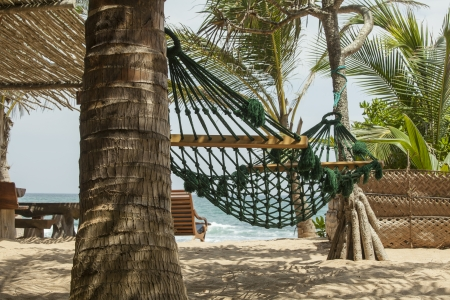 Romantic cozy hammock in the shadow of the palm on the tropical beach of a resort by the sea photo