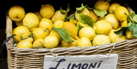 freshly picked: freshly picked lemons in basket on Italian market Stock Photo