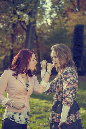 Two sisters having an arguement in a park  photo