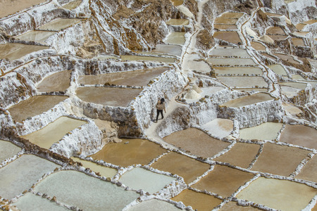 moray: Visitor walking between the salt water basins at the salt mines in Maras, in Maras, Peru.