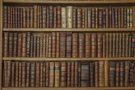 Wooden bookshelves with antique leather books